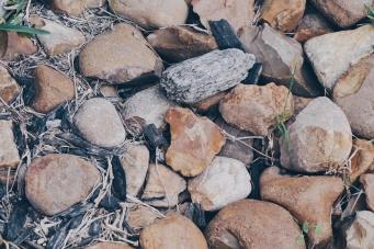 Rock Bottom by Tammie Riley